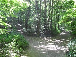 Une promenade dans les parcs et châteaux de Rueil-Malmaison