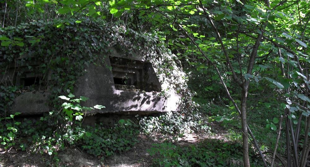L'allée des bunkers