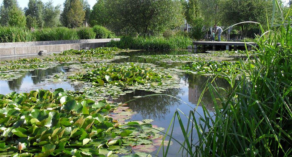 The park in Nanterre