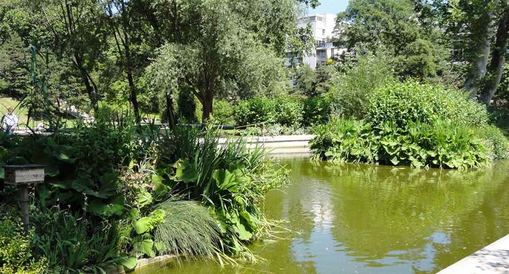 The pond of Bercy park