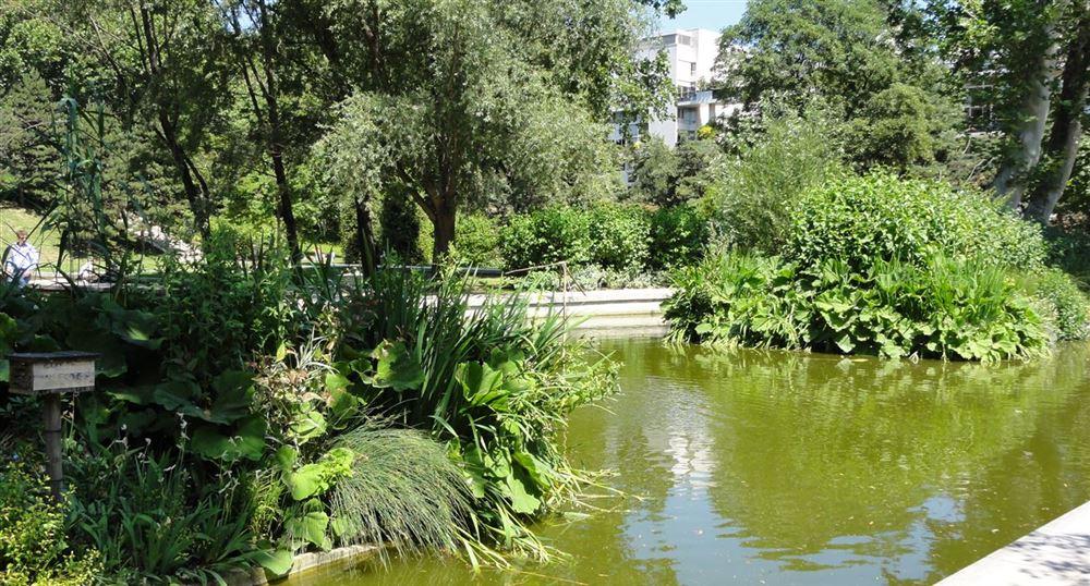 The pond of Bercy park