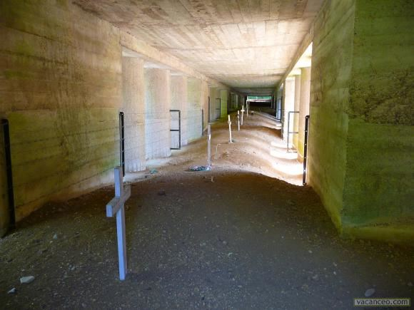 The trench of bayonets