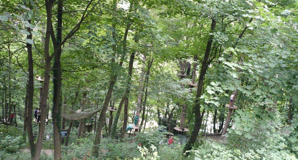 Parc Aventures