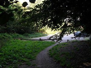 Sentier découverte de Maincourt