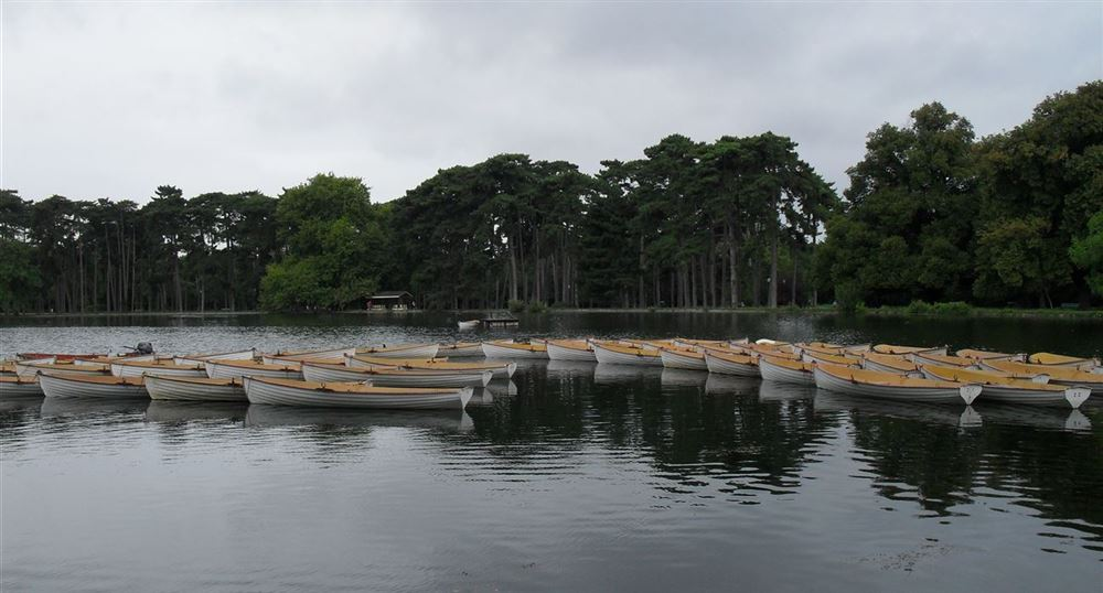 The canoes of the bois de Boulogne