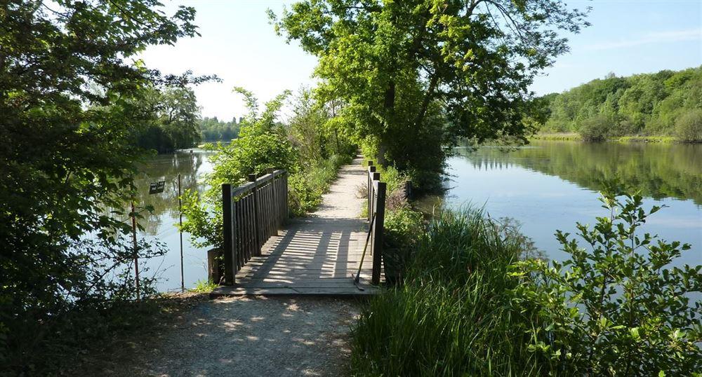 Passage between two ponds