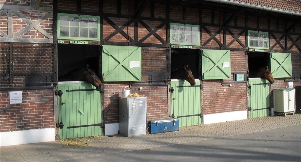 The boxes of the horses