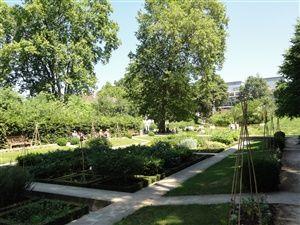 Parc de Bercy - Jardin Yitzhak Rabin Paris 12eme