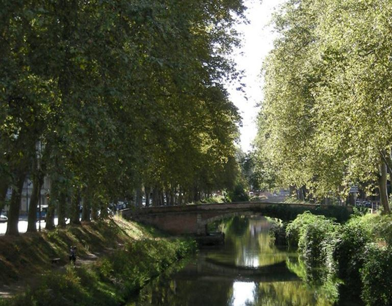 The Brienne canal