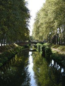 Promenade découverte de Toulouse, les Jacobins, le Capitole, site de Bazacle