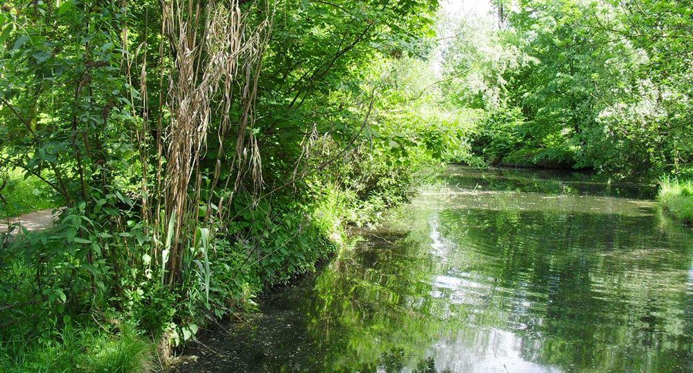 Le ruisseau de Gravelles