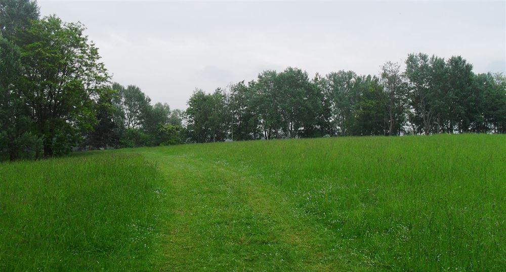 Path along the banks