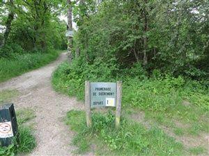Randonnée de Sucremont dans la forêt de Fontainebleau.