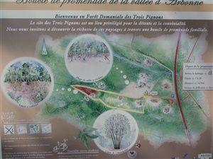 Randonnée de la vallée d'Arbonne dans la forêt de Fontainebleau