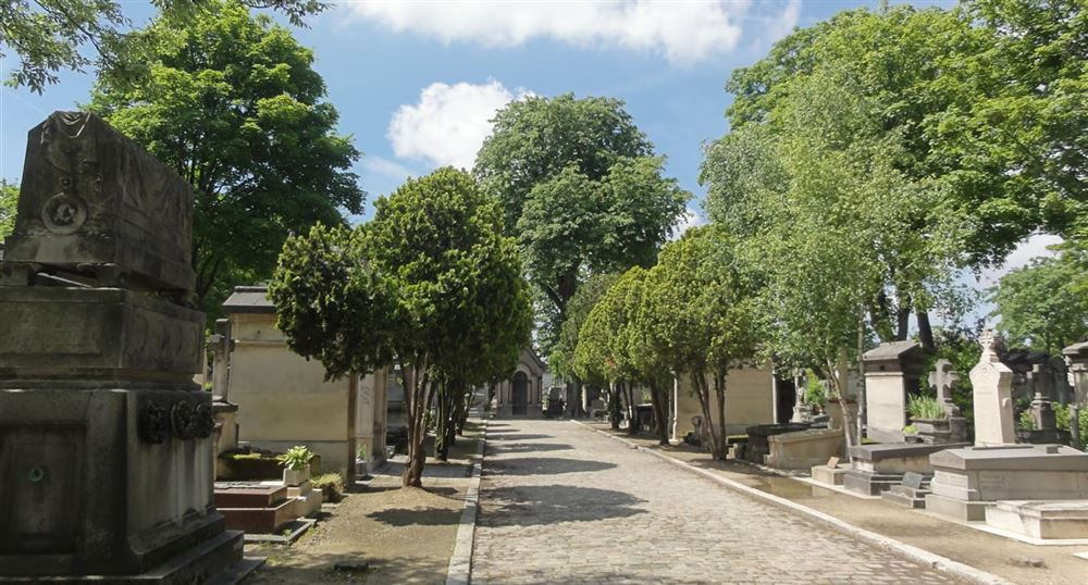 The alley of the cemetery