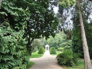 Balade dans la forêt de Louveciennes