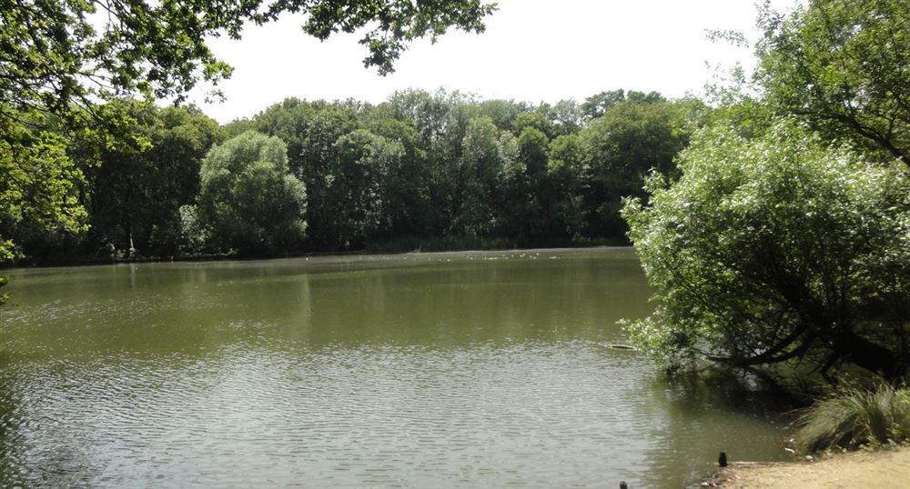 L'étang de Béchevet