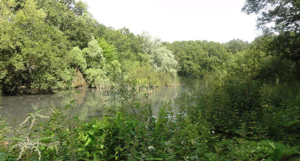 Autour de l'étang de Béchevet