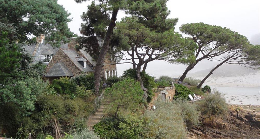 The vegetation along the sea