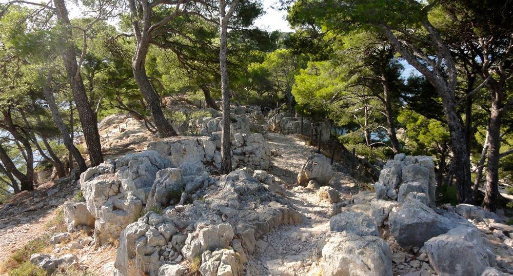 Chemin pour accéder à Port Pin
