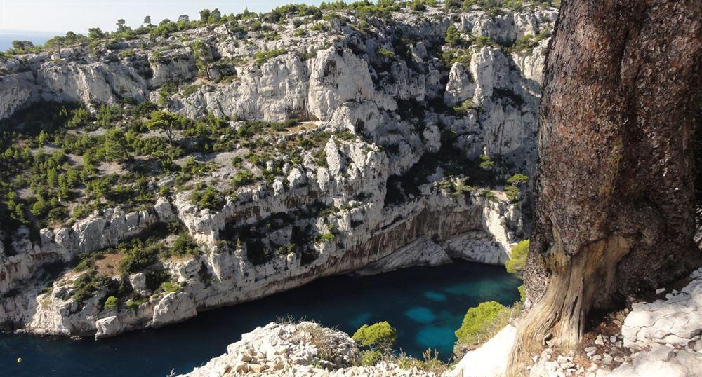 Above the Calanque D'en-Vau