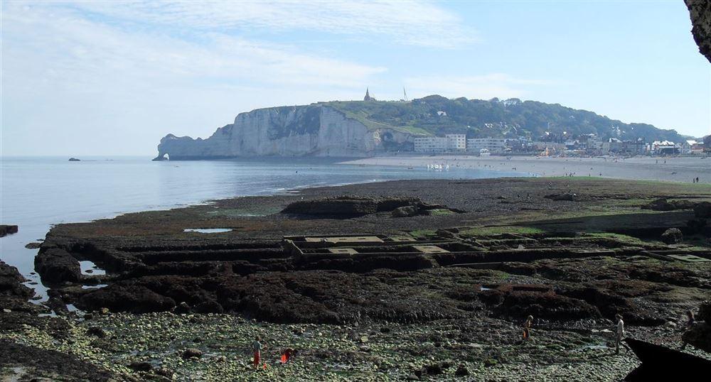Les falaises à marée basse