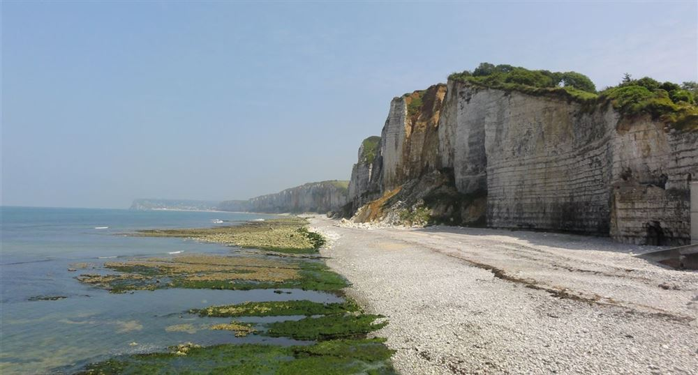 View of the cliffs of Yport
