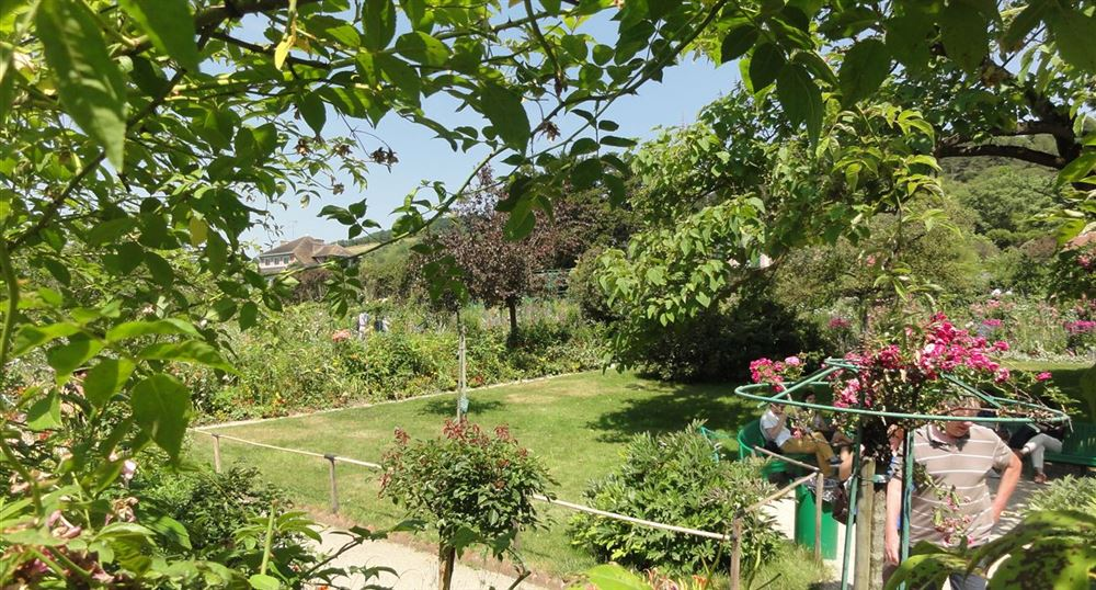 'Claude Monet''s garden'