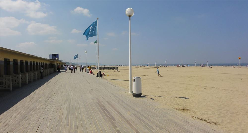 Planks in Deauville