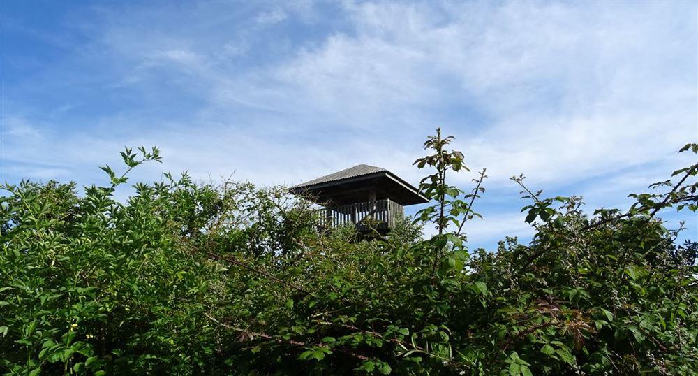 La tour d'observation