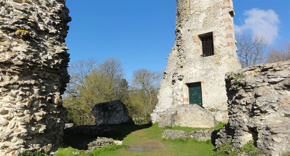 The Tower of Anne of Brittany