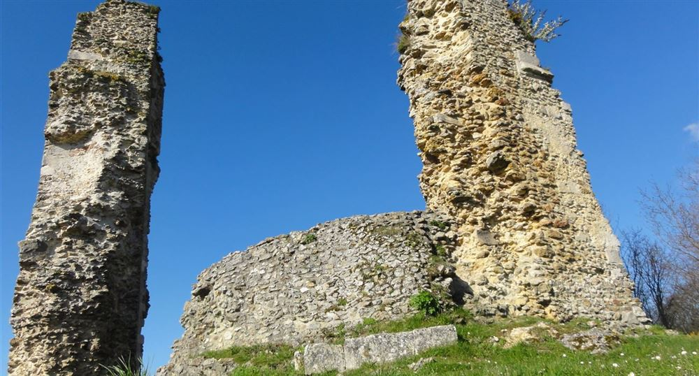 View of the ruins of the Castle