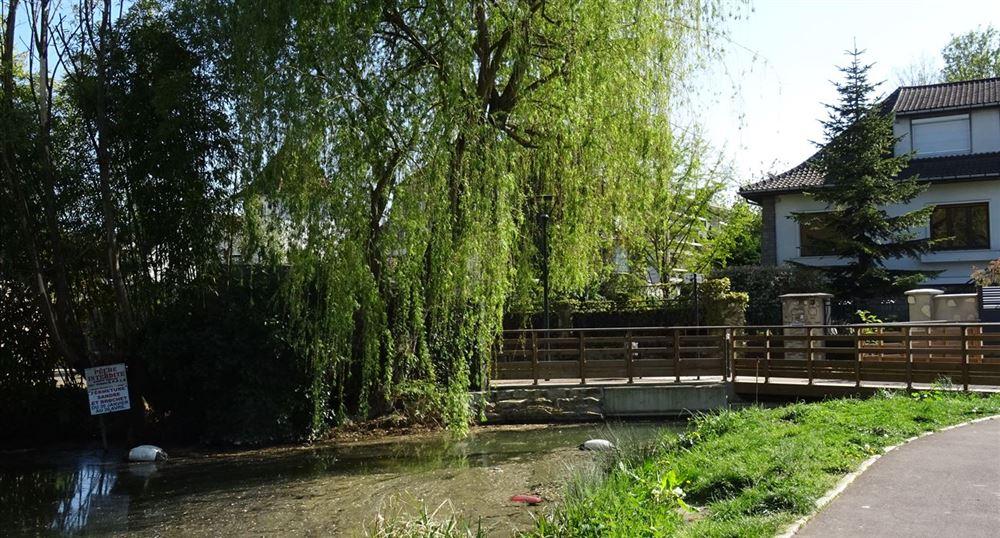 Small bridge over the Lake
