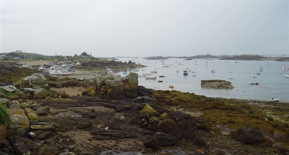 Les rochers à marée basse
