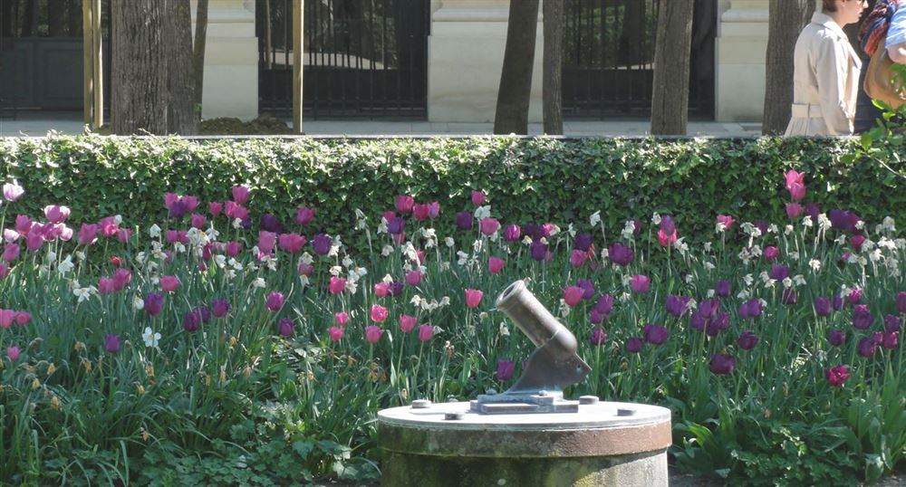The cannon of the Palais-Royal