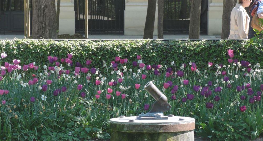 Le canon du Palais-Royal