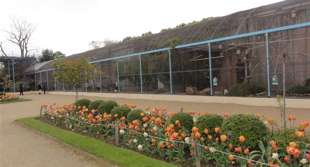 'The aviary of the Jardin d''Acclimatation'