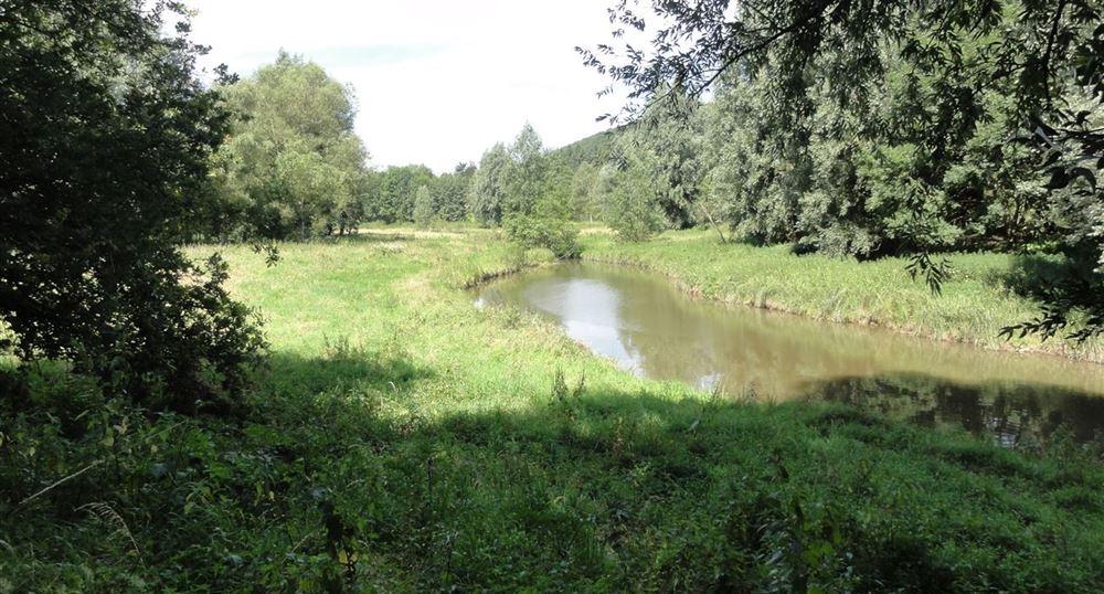 Along the stream Yvette