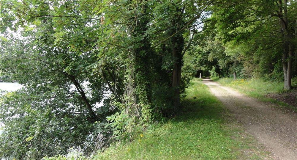 Le chemin le long de la Seine