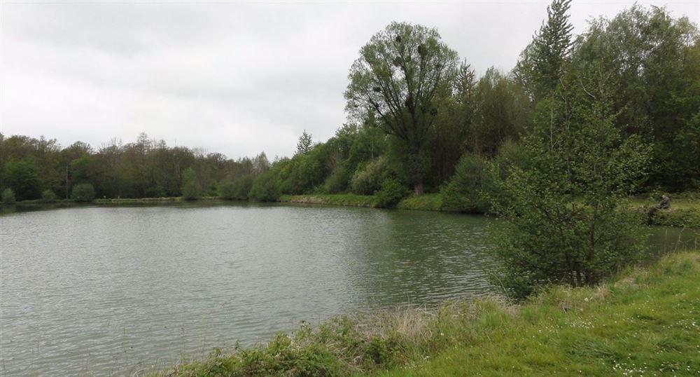 L'étang autour de l'abbaye