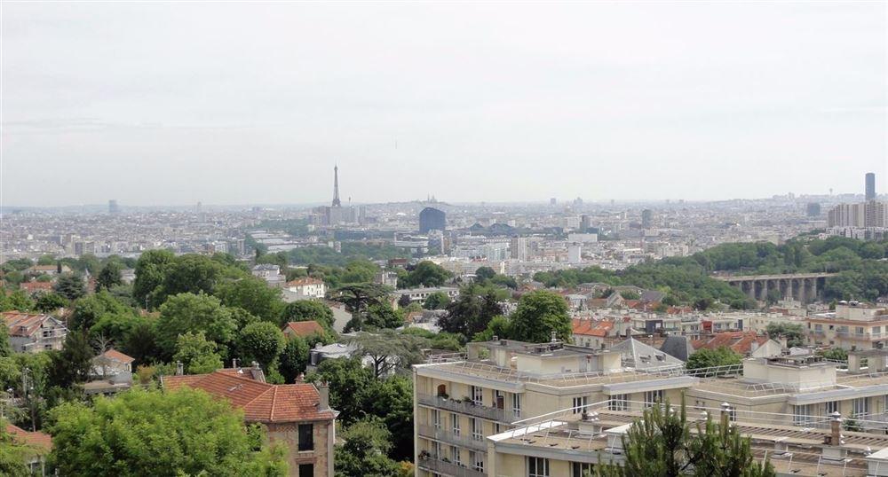 Le point de vue sur Paris