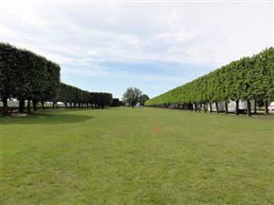 L'Observatoire et la forêt de Meudon