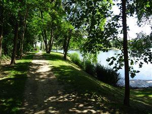 Les étangs de la petite plaine à l'Isle-Adam