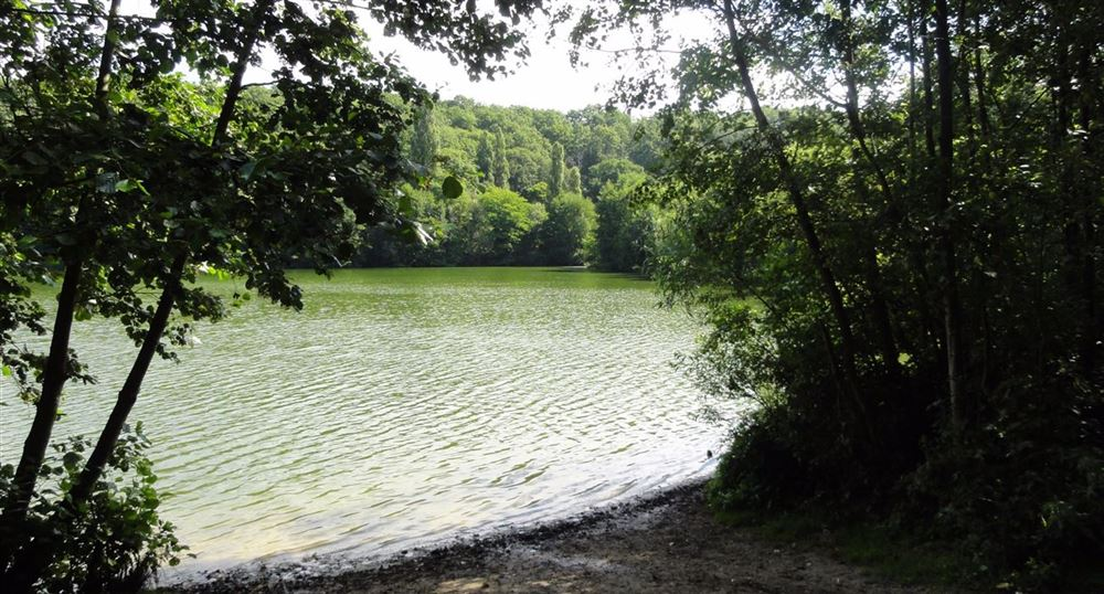 The old swimming pond