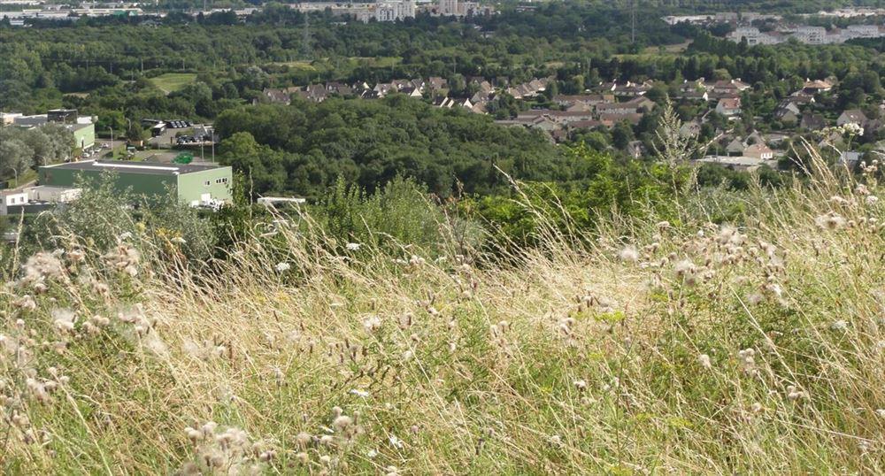 Vue sur Saint-Quentin-en-Yvelines