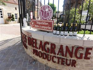 The road of the wines in Burgundy