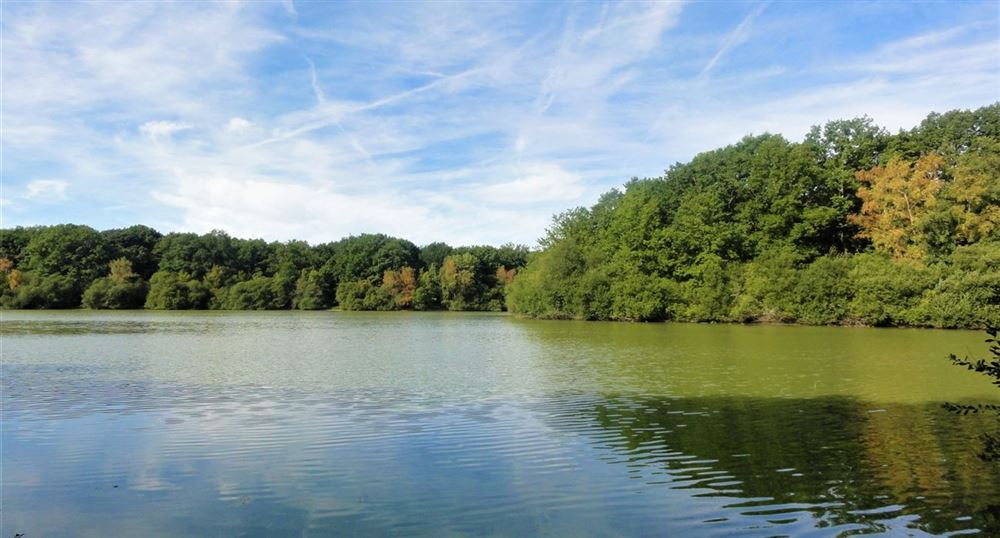 To the pond de la Tour