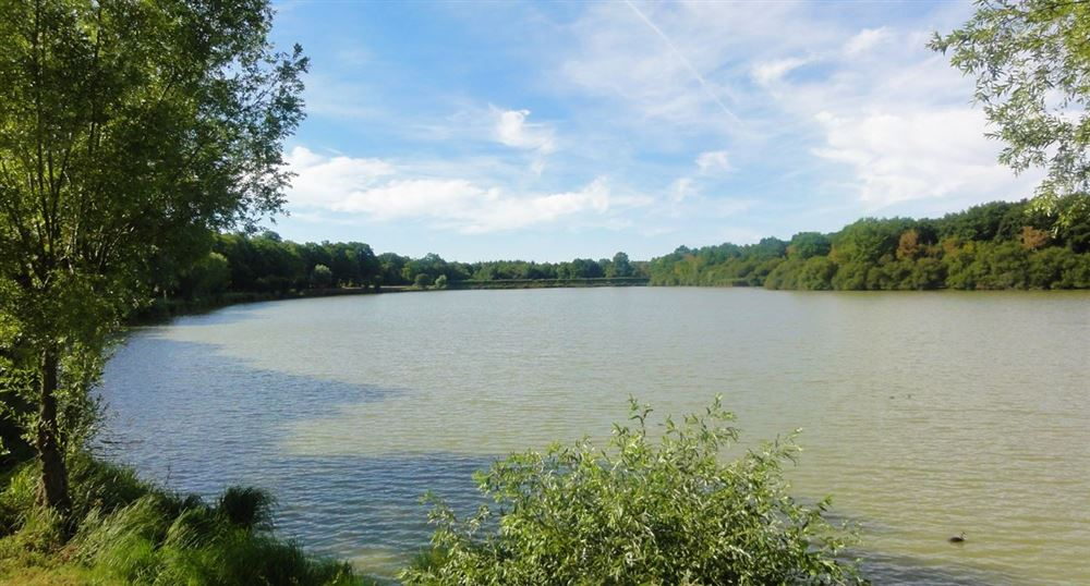 View of the pond de la Tour