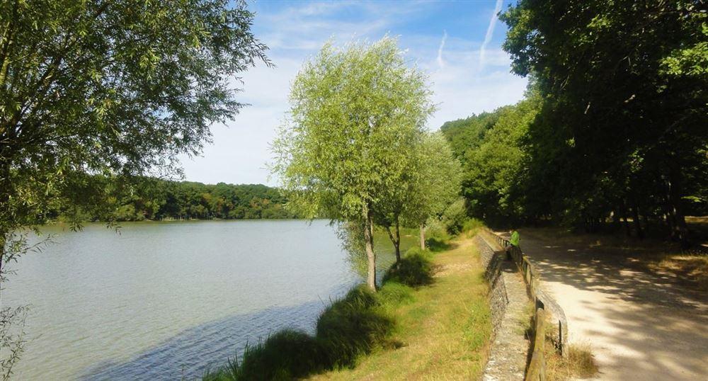 The banks of l'Etang de la Tour