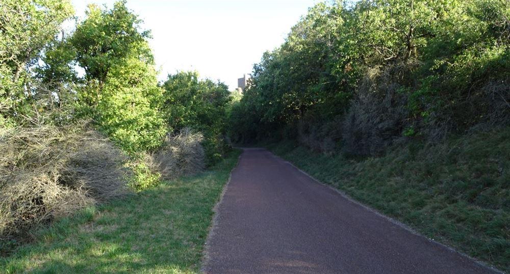 Le chemin vers le village